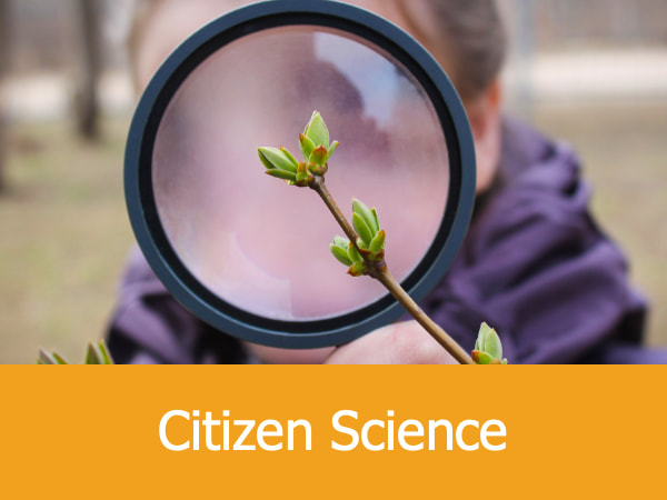 Citizen Science