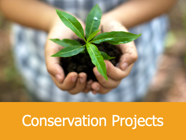 Conservation Projects