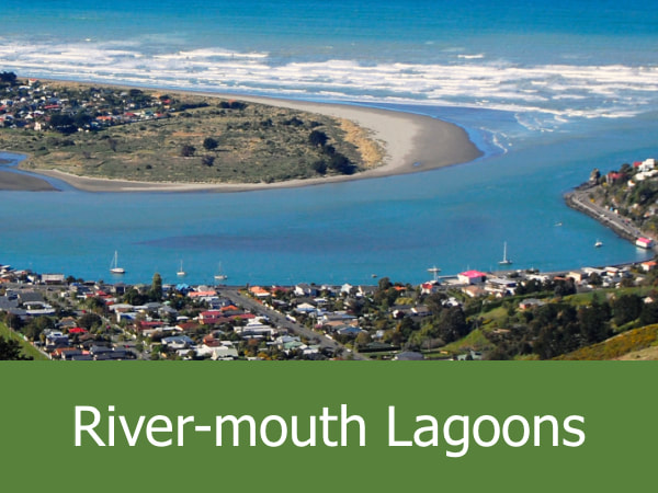 River-mouth Lagoons